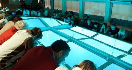 Interior barco de cristal